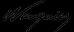 Logo voiliers Wauquiez